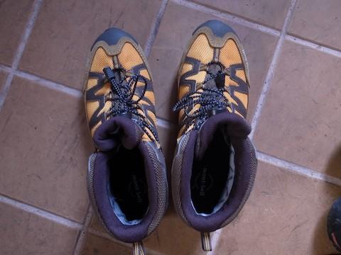 shoes1603d